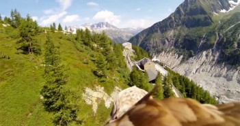 Experience-flying-through-a-camera-strapped-to-the-back-of-an-eagle