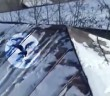 Video-Bird-actually-sledding-on-the-roof-of-a-house-using-a-plastic-lid